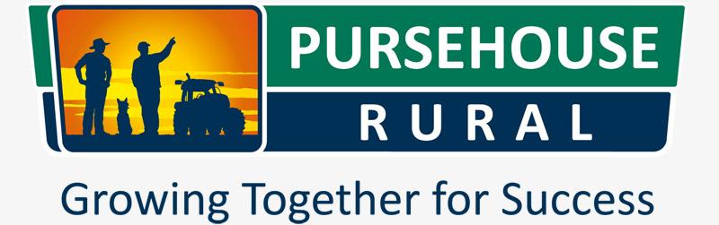PURSEHOUSE logo design