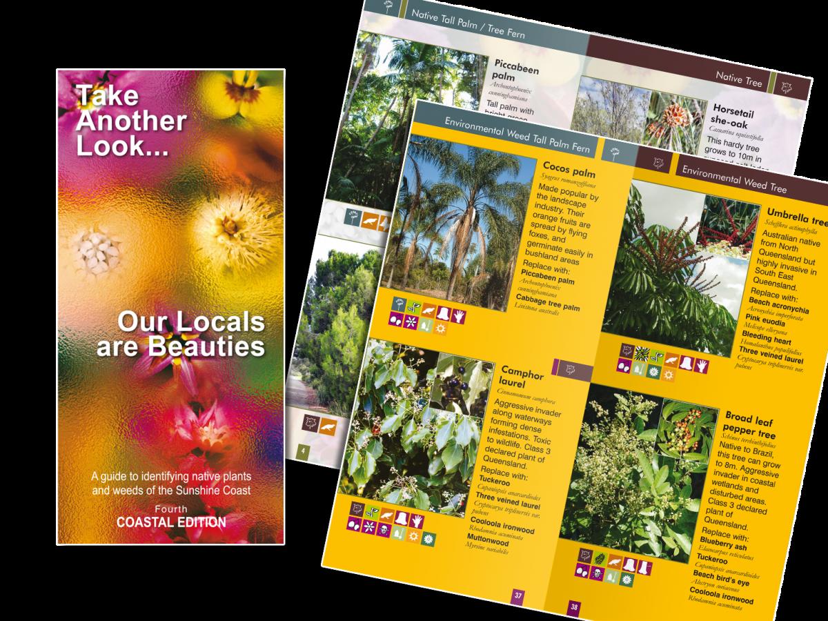 SCRC DL Brochure